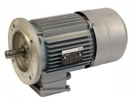 3-PH. MOTOR C.C. BRAKE 90 SPE P4 KW1,5/5 V100/173/
